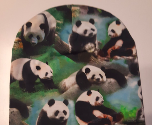 Pandadega
