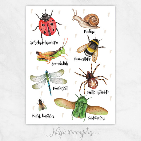 Putukad hele taust