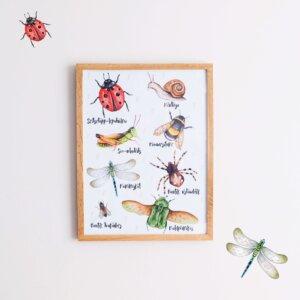 Putukad raamis
