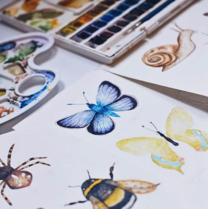 nagu muinasjutus liblikad ja vesivärvide karp