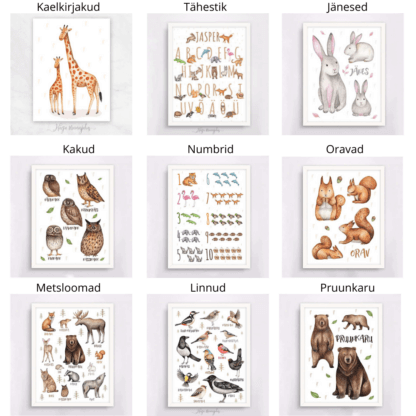 Lindude-loomade komplekt