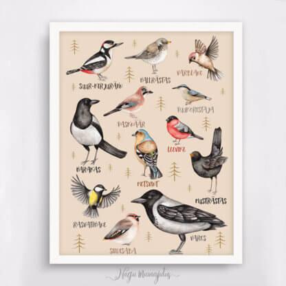 Linnud beez taust