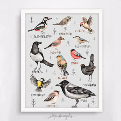 Linnud hall taust
