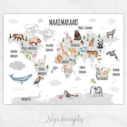 Maailmakaart hall kaart valgel taustal