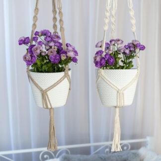 Lillepotihoidja valge ja beež